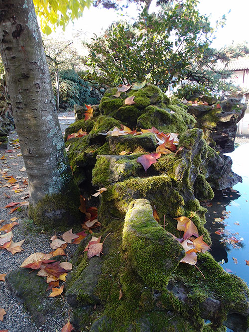 Sun Yat-Sen Garden three, Vancouver